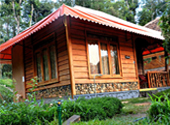 Pugmark Jungle Resort  wayanad