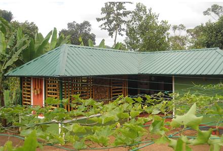 HARITHAVANAM FARM HOUSE Thekkady