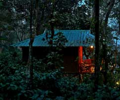THENNAL JUNGLE CAMP RESORT