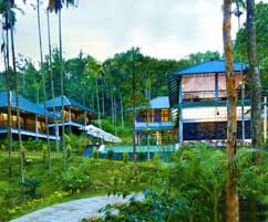 COFFEE TRAIL RESORT